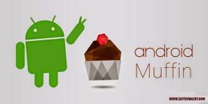Muffin 6.0?