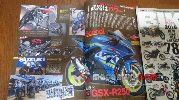 suzuki-gsx-250-2016-macantua-com_-jpg.jpeg